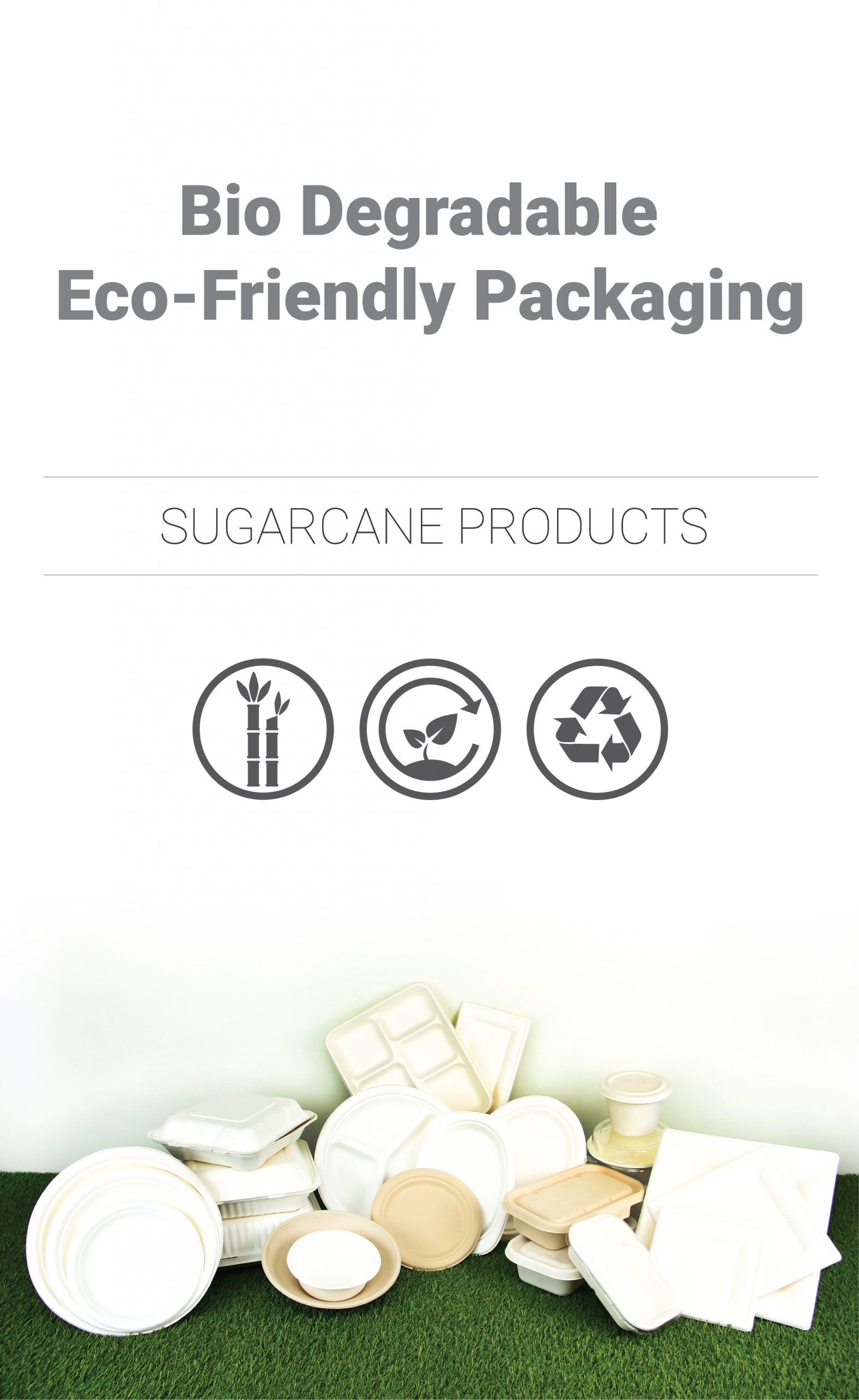 Sugarcane Products